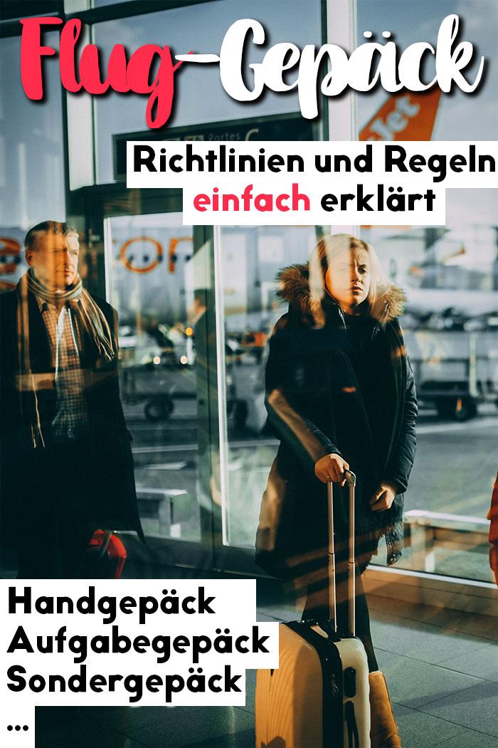 Flug-Gepäck Handgepäck Aufgabegepäck Sondergepäck-pin